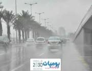 الأرصاد الجوية: استمرار هطول الأمطار الرعدية على هذه المناطق غداً