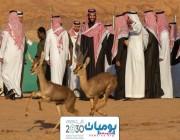 """محمد بن سلمان يطلق محمية شرعان الطبيعية في محافظة العلا """" صور """""""