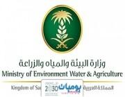 وزارة البيئة والمياه والزراعة تعلن عن توفر وظائف شاغرة للرجال في مختلف مناطق المملكه