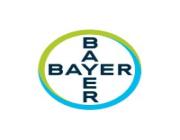 شركة باير للأدوية تعلن عن وظائف شاغرة