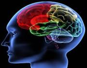 طريقة جديدة لعلاج الزهايمر والسكتة الدماغية .. التفاصيل هنا !!