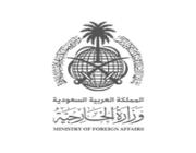 وزارة الخارجية تعلن عن وظائف شاغرة لدى منظمة الأمم المتحدة