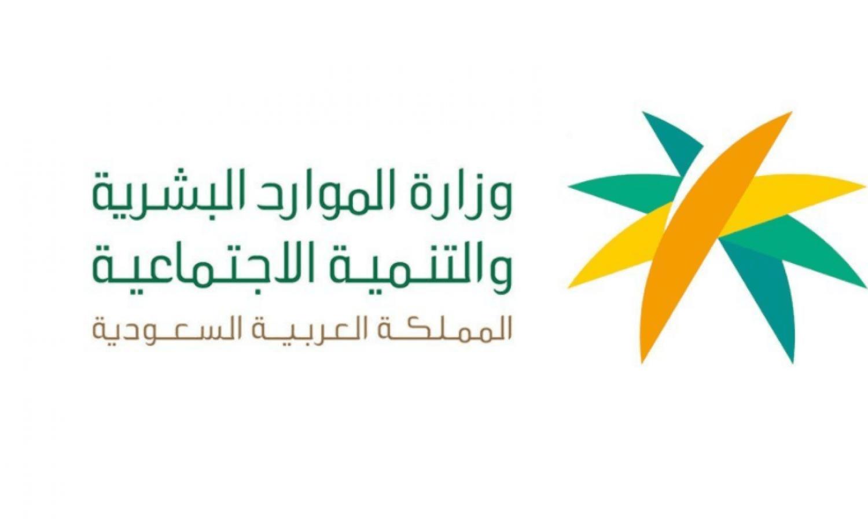 مختص يحذر من منصات التوظيف الوهمية..